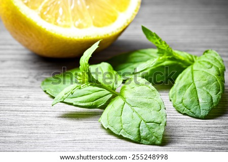 Green mint leaves macro in studio with lemon in the background. - stock photo