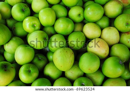 Green Monkey apple or jujubes