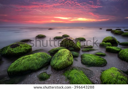 Green morning. Rocky beach seascape at sunrise.  - stock photo