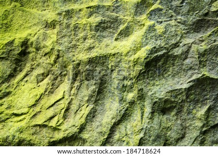 Green Moss On Rock In The Forest - stock photo