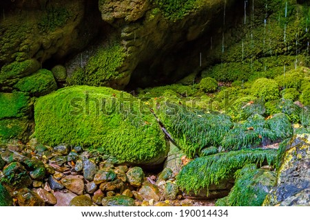 Green mossy rocks with wet surface near river in Greece - stock photo