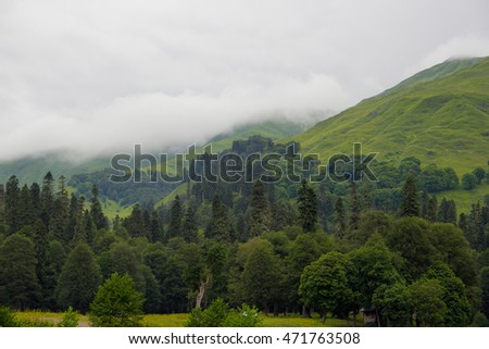 green mountain scenery in summer as the background