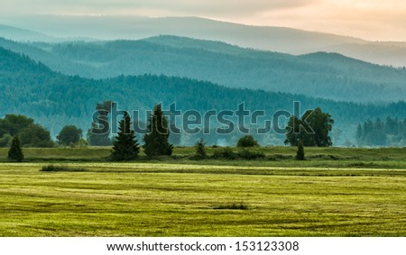 Green mountains and grass in layers