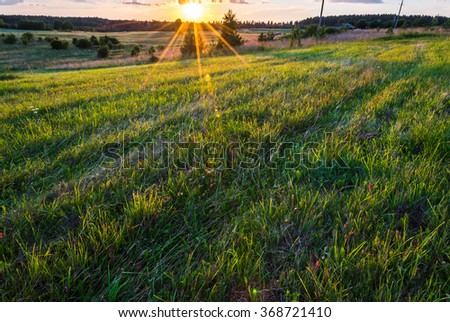 Green natural meadow at beautiful sunlight - stock photo