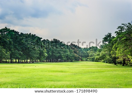 Green nature on public park with rain cloud