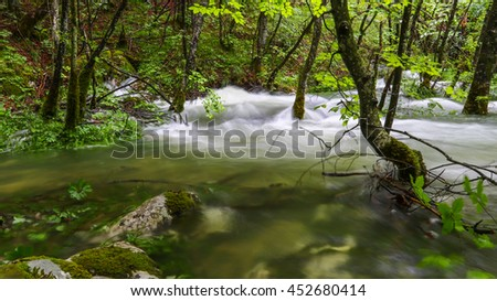 Green nature water flow through forest - stock photo