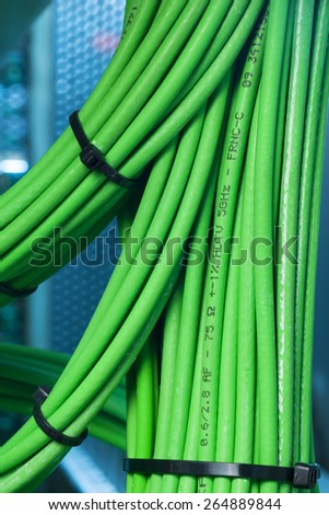 Green network wires strapped into a bun Binder - stock photo