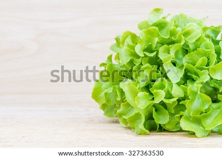 Green oak lettuce fresh on wood table with copy space. - stock photo