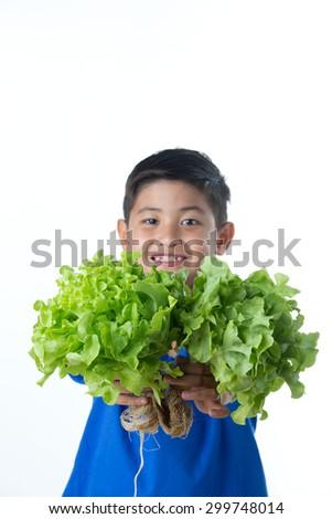 Green oak organic vegetables in child hand - stock photo