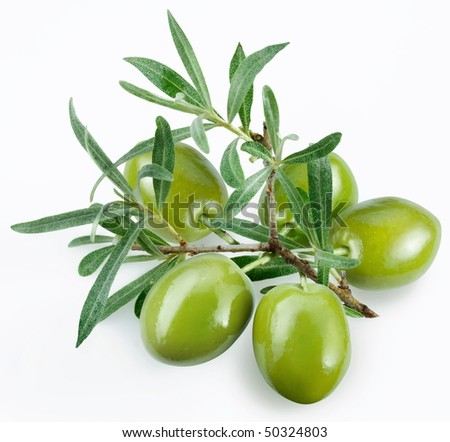 green olives with a branch on a white background - stock photo
