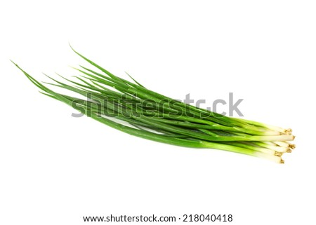 Green onion isolated on white - stock photo