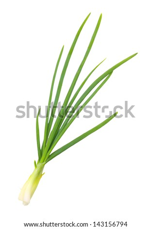 Green onion isolated on white background.