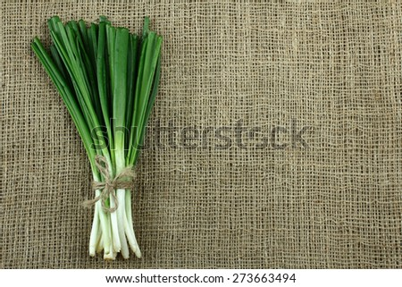 green onion on sacking - stock photo