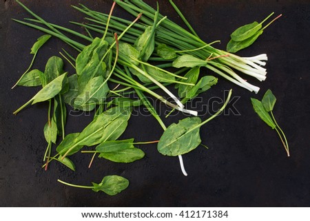 green onions and sorrel leaves scattered on a dark orange background. blackout photo - stock photo