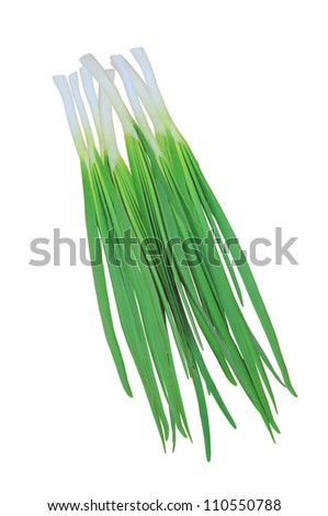 green onions isolated on white background - stock photo