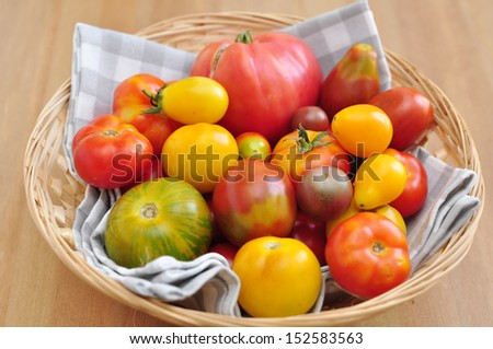 Green, orange, yellow and red tomatoes