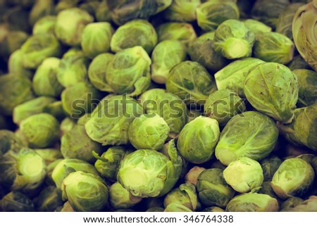 Green organic brussel sprout background from local farmers market