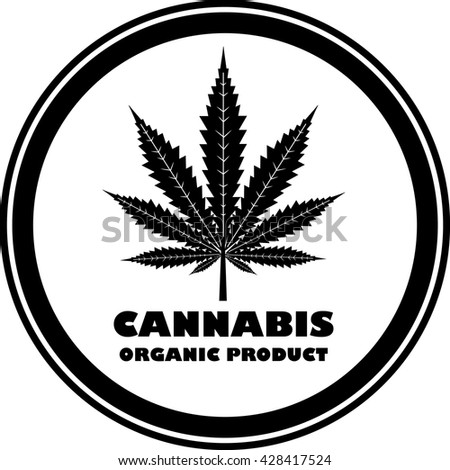 Green organic cannabis,marijuana. - stock photo
