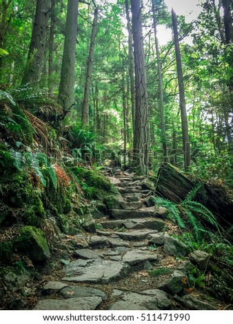 Green Pacific Northwest Rocky Hiking Trail