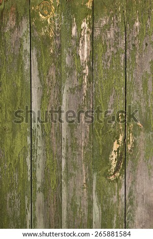Green painted plank background of old weathered wood