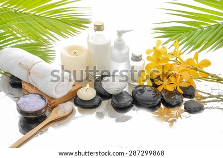 green palm and spa set on wet background - stock photo
