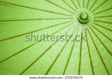 Green Paper Umbrella - stock photo