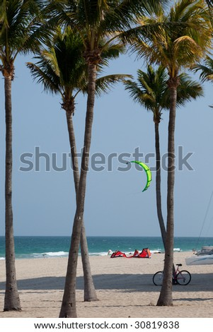 green para-sail and a flash of red between royal palm trees plus a parked bicycle, Fort Lauderdale public beach - stock photo
