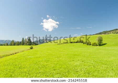 Image result for cartoons of a green pasture