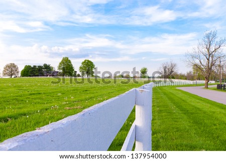 Green pastures of horse farms. Country summer landscape. - stock photo