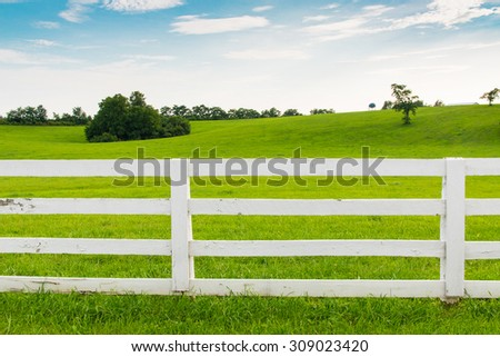 Green pastures of horse farms with white wooden fence. Country summer landscape. - stock photo