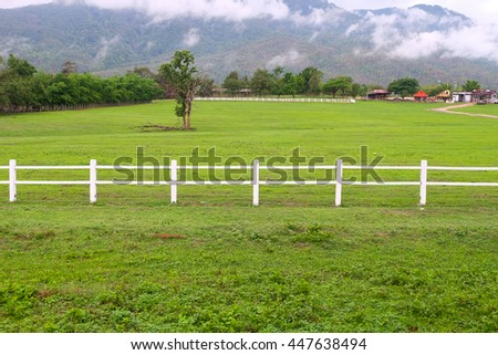 Green pastures with white fence.