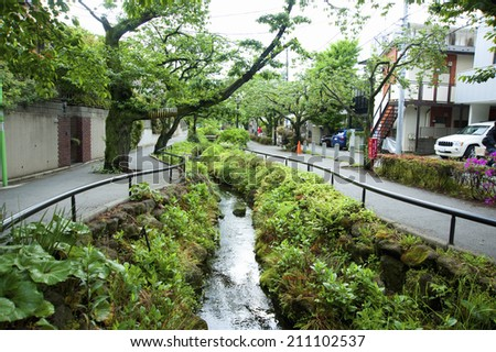 Green Paths Of Kitazawa River