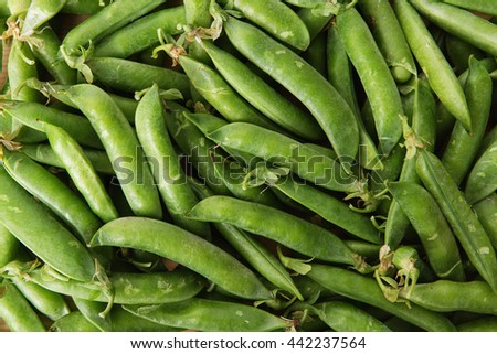 green peas in pods freshly picked on wood.