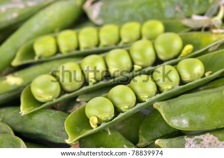 Green peas in pods with water drops