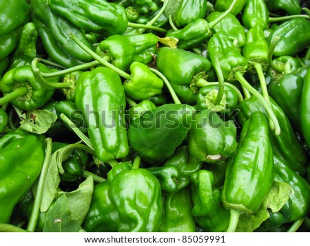 green peppers at the farmer's market