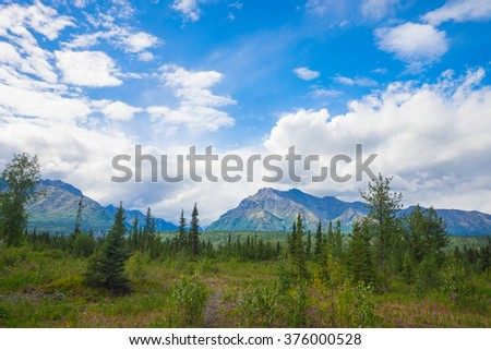 Green pine tree meadow below mountains in vast Alaskan wilderness. - stock photo