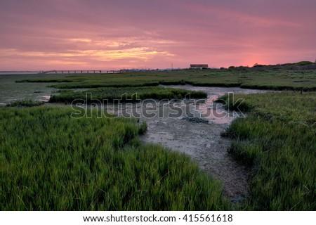 green Planet , olhao, Algarve, Portugal - stock photo