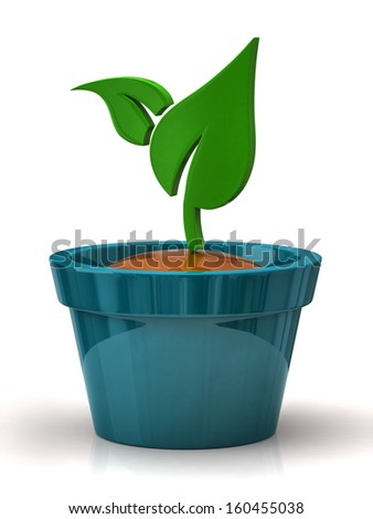 Green plant in blue pot - stock photo