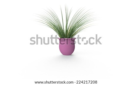 Green plant in pink vase isolated on white - stock photo