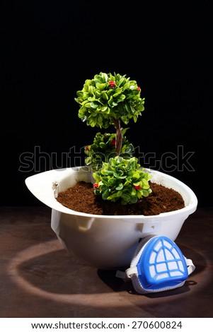 Green plant in white helmet onspot light over black  - stock photo