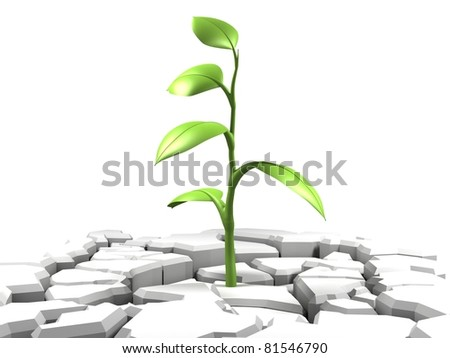 Green Plant on Damaged Earth