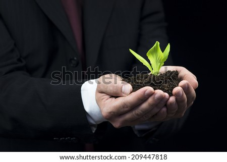 Green plant stems in business man hand - stock photo