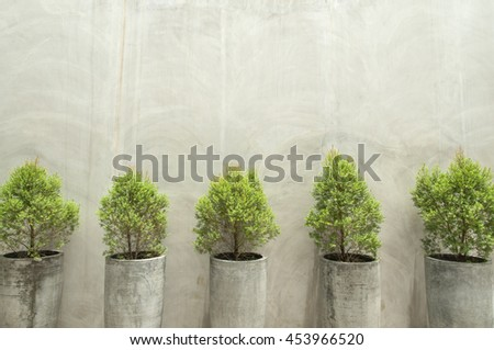 Green plants in concrete pots on concrete wall background