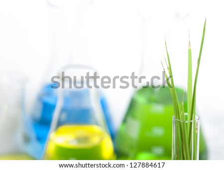 Green plants in laboratory equipment on white background