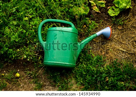 Green plastic watering can