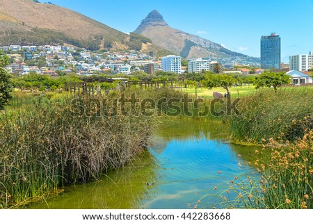 Green Point Park, Cape Town - stock photo