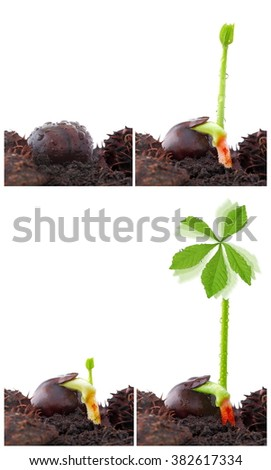 Green power plant, sustainable development - stock photo