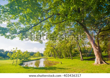 Green public park outdoor with blue sky cloud and tree