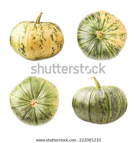 Green pumpkin isolated over the white background, set of four foreshortenings - stock photo