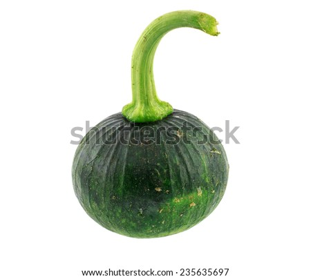 Green pumpkin isolated over white background
